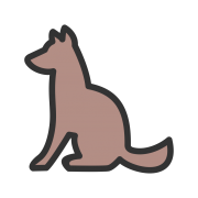Kotorvet, veterinarska ambulanta Budva
