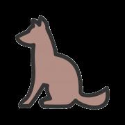Canis, veterinarska ambulanta Budva