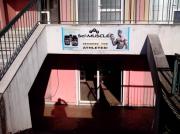Магазин спортивного питания «sci-muscle» Podgorica